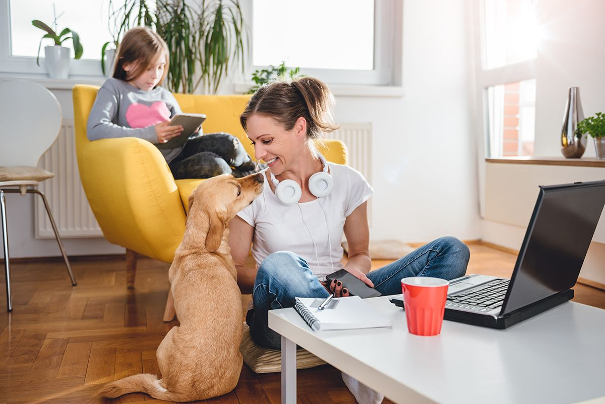 Web-based screen sharing can keep you productive while working from home. Pets and kids notwithstanding.